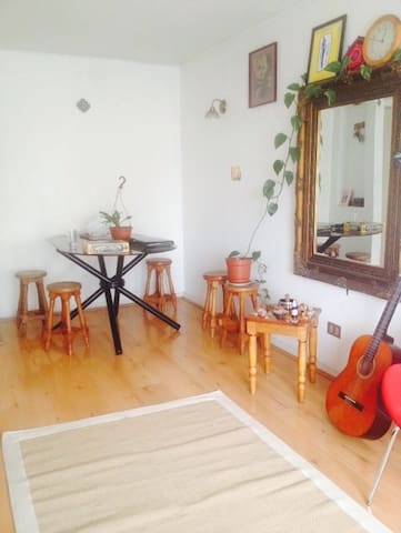 Friendly place Providencia - Providencia - Appartement