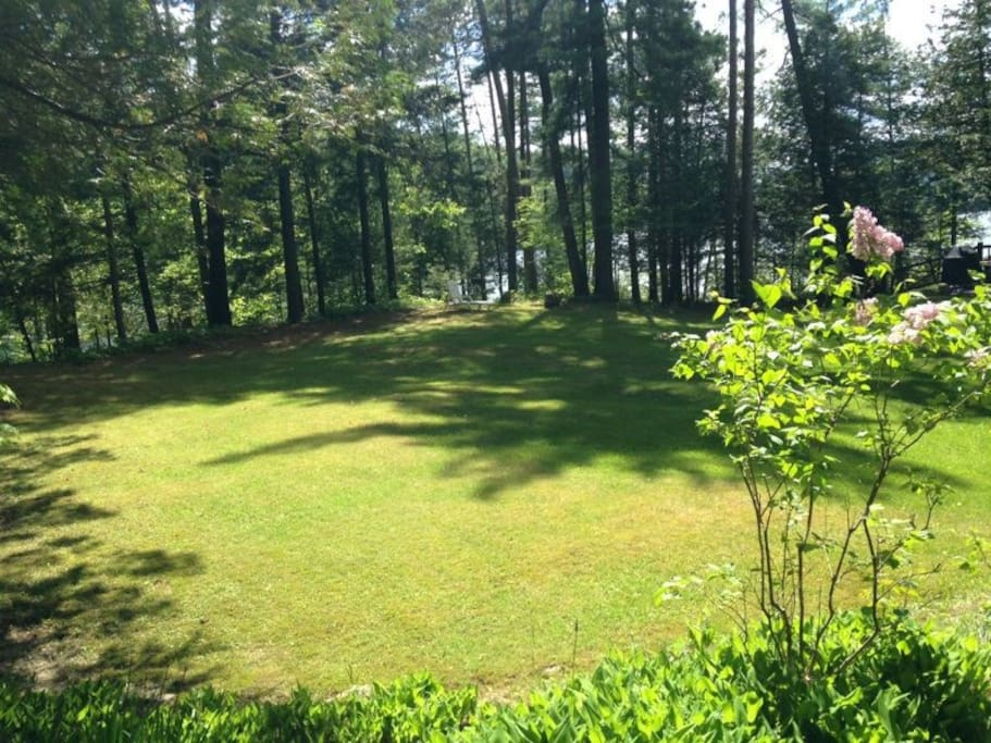 Great yard for croquet, frisbee, and fetch.