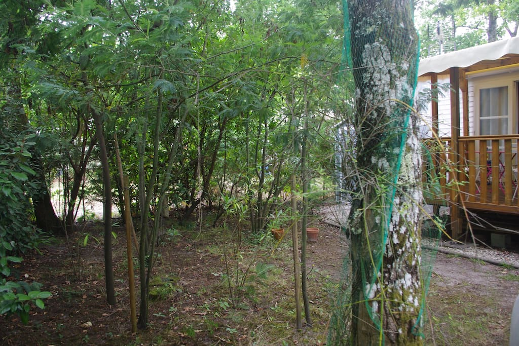 jardin mobil-home