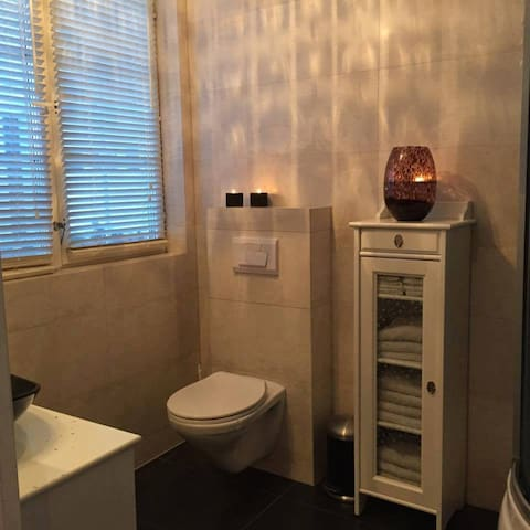 Toilet on first floor with shower