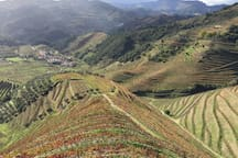 Impressions from Douro Valley