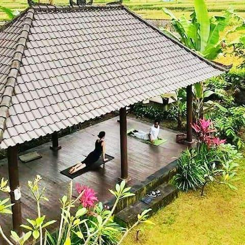 Demank Hidden: BnB with Ricefield and Garden View