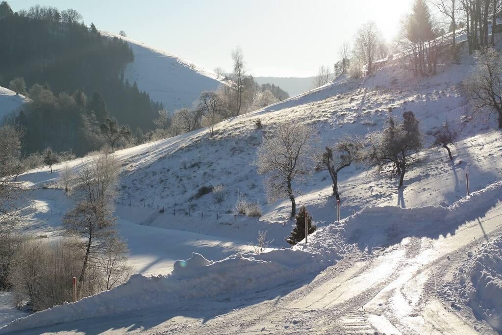 Winterwonderland direkt vor der Haustüre.