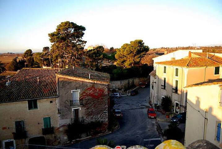 Classic town house, Languedoc - Nézignan-l'Évêque - Haus