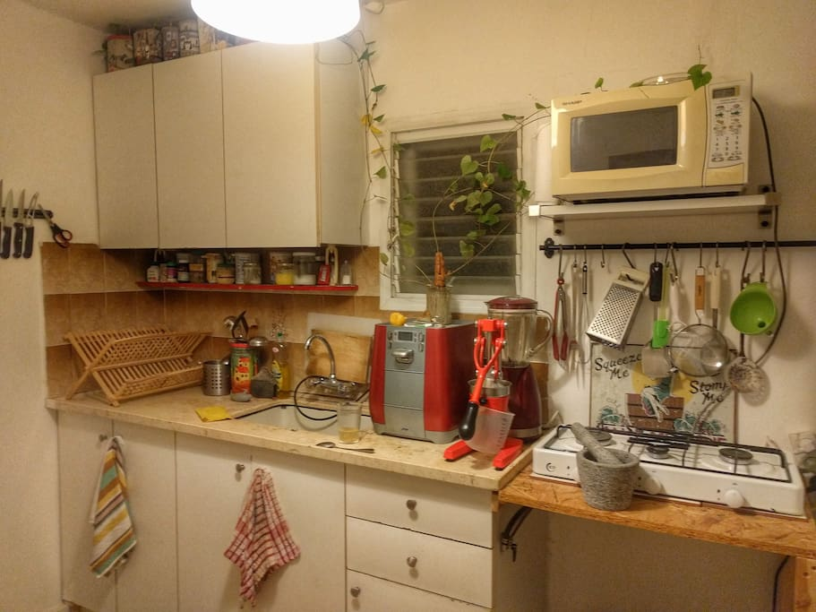 A nice green friendly Kitchen