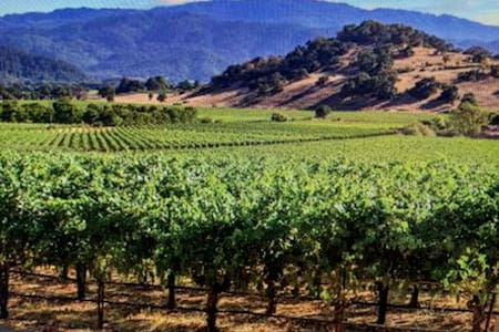 Private Cozy Romantic Resort Napa Valley Sleeps 4