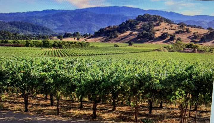 Romantic Luxury Getaway 10 Min to Downtown Napa