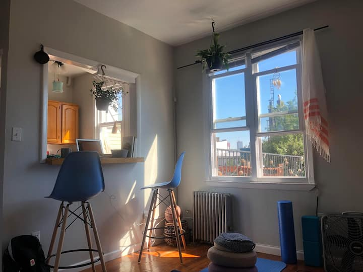 1 bedroom, sunlit apartment with 2 cats!