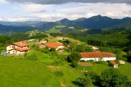 LUJOSOS APARTAMENTO EN ZONA RURAL - Mallabia - Daire