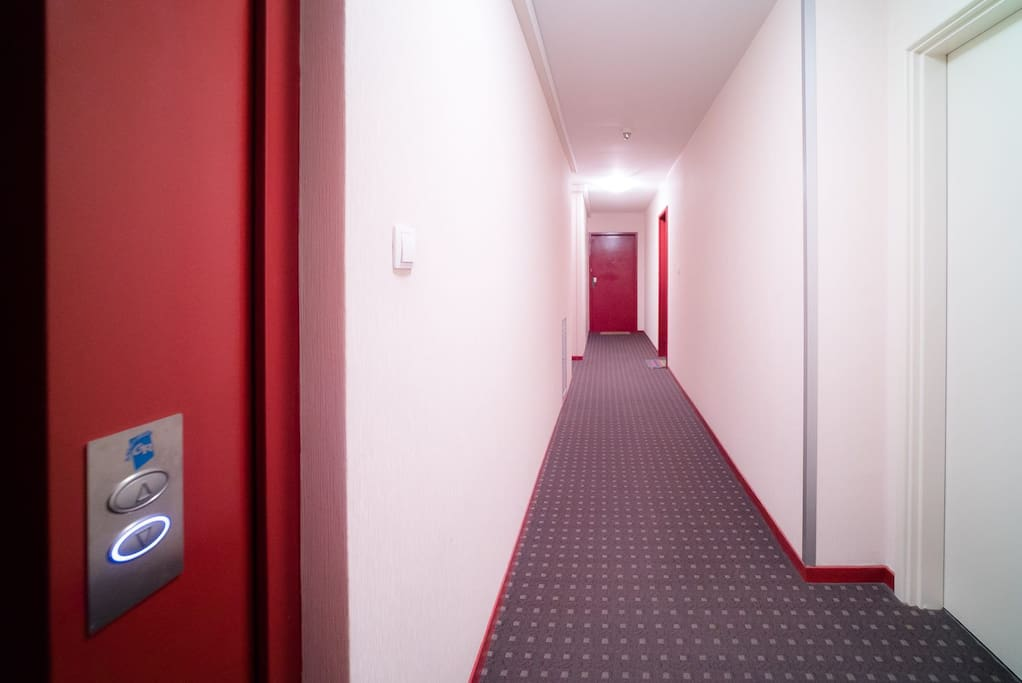 couloir pour atteindre l'appartement / commodor for the flat