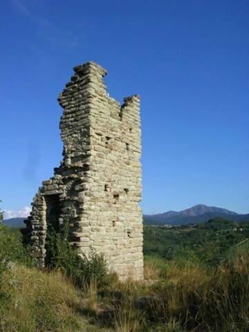 Torre Saracena dell'Albarola