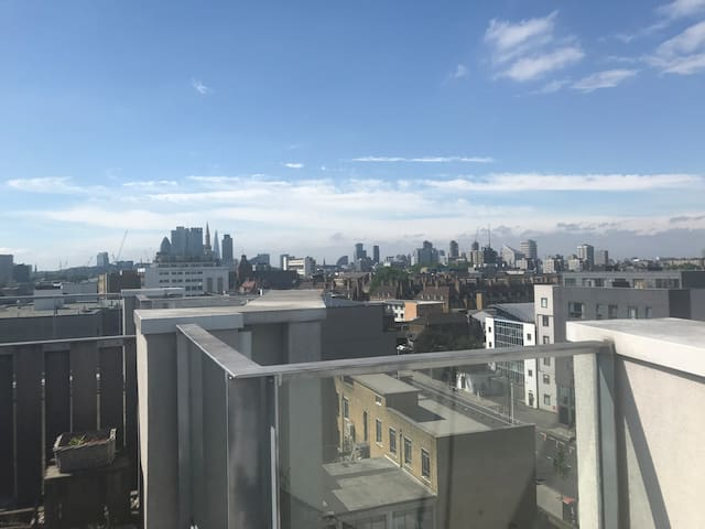 Private Room near shoreditch + roof terrace