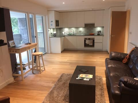 Modern Apartment near the O2. 2mins to Tube