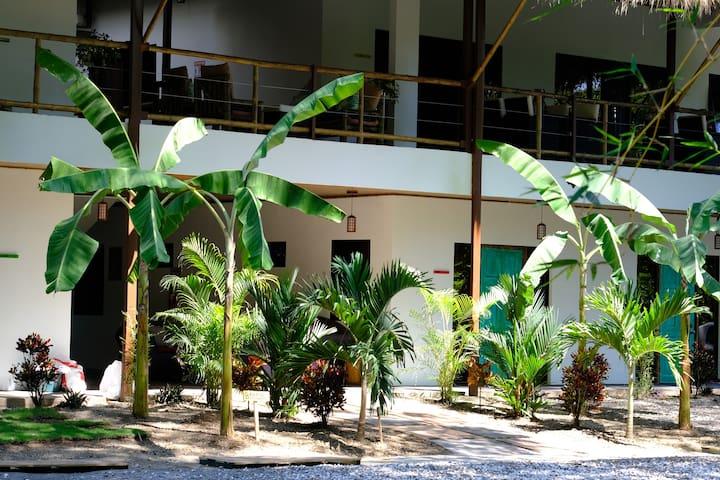 Vida Asana - Jungle & Beach