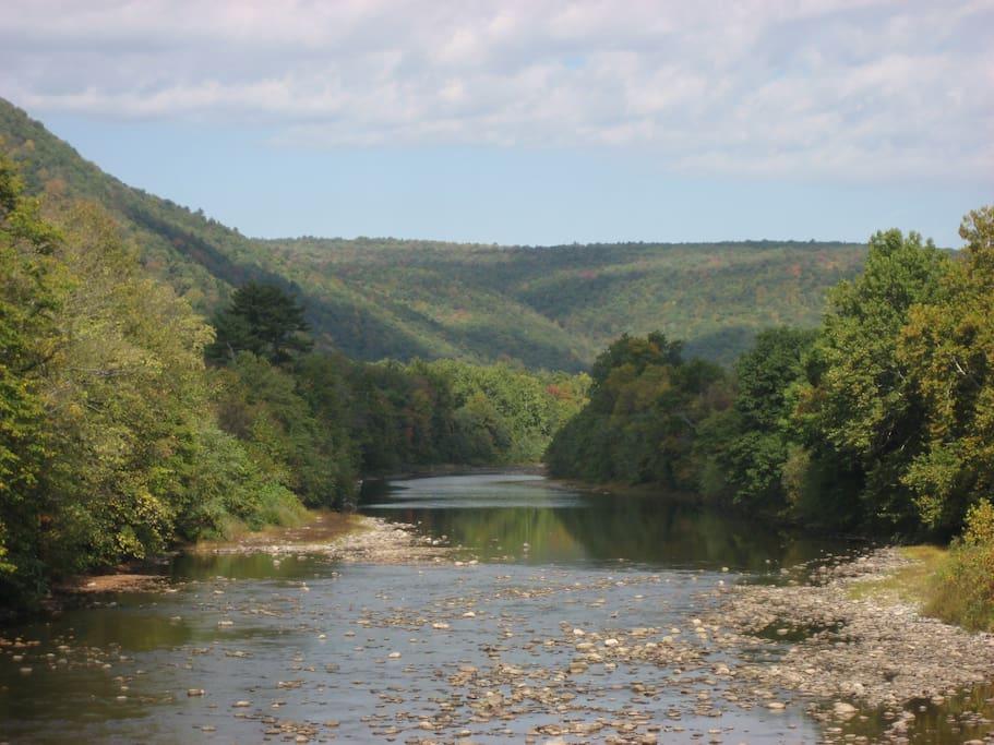 The Loyalsock Creek