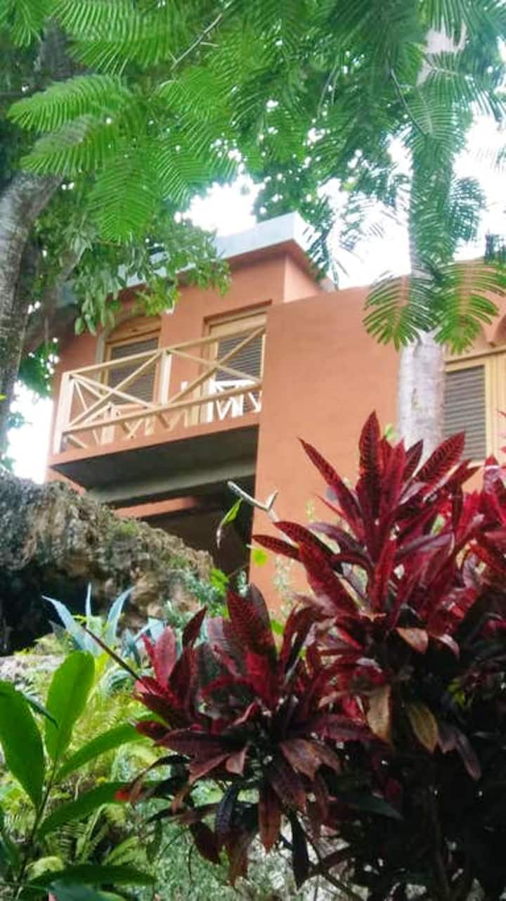 House with 3 bedrooms in Las Galeras, with wonderful sea view, enclosed garden and WiFi - 200 m from the beach