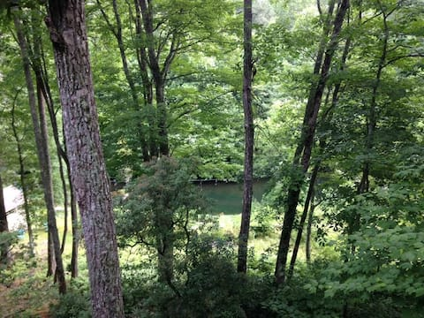 Hummingbird Hill, A quiet place in the Woods