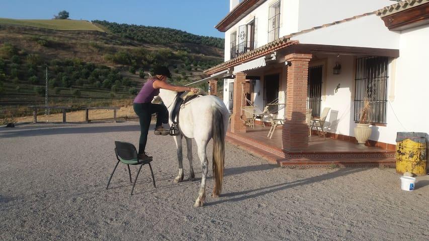 Aventura con Caballos - Setenil de las Bodegas - Apartment