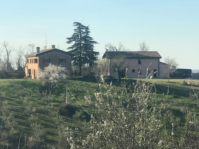 House with panoramic view on the hills of Dozza