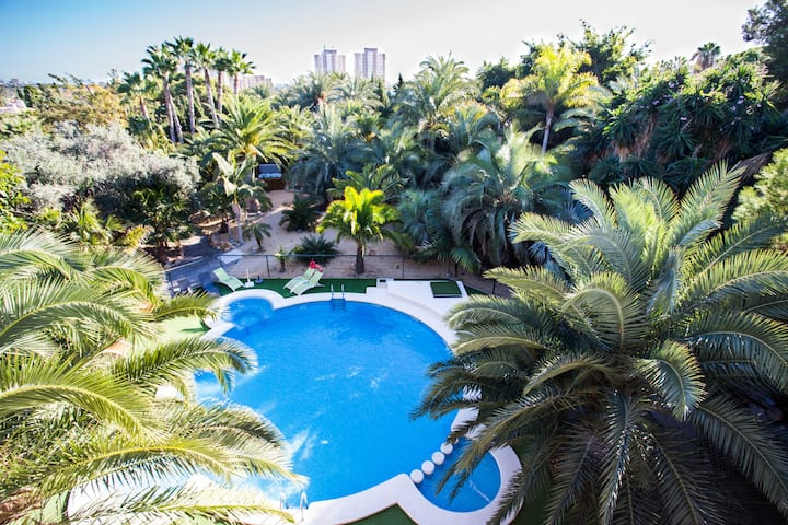 Unique palm garden with Jacuzzi and swimming pool