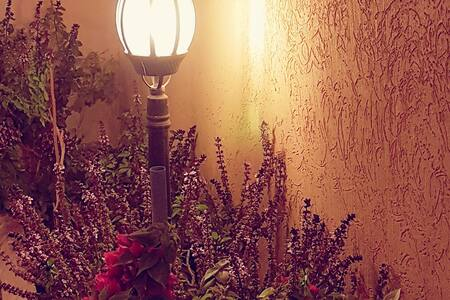 Your Villa in Riyadh (Al-Woroud  – Golden Spot) - Riyad - Villa