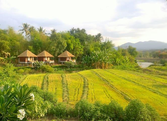 River Pai Fan Cottage A