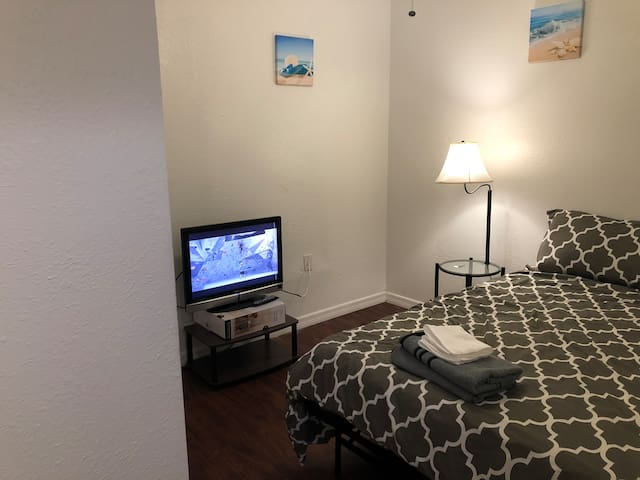 Private Room C w/ TV- Busch Gardens, Lowry Zoo,USF