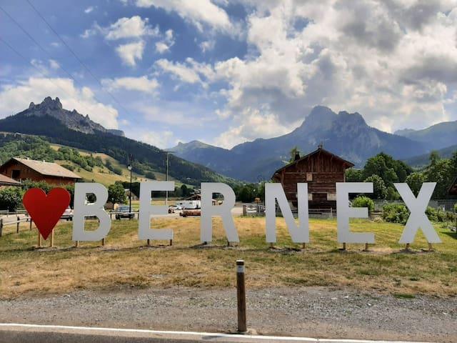Le 67, lac et montagne  à bernex (74500)