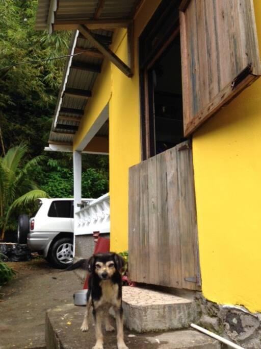 Front veranda and kitchen door