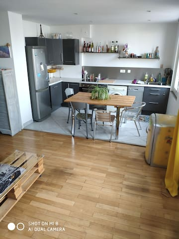 Appartement Gerland cosy 53m2, 1 chambre