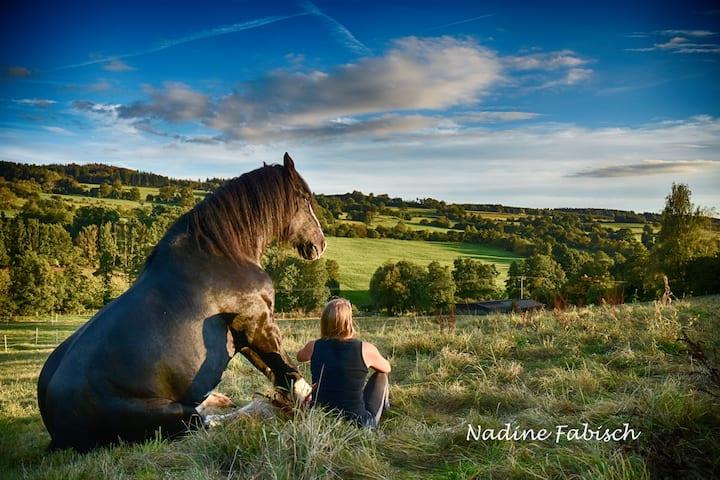 Ferienwohnung auf dem Pferdehof - Natur pur!