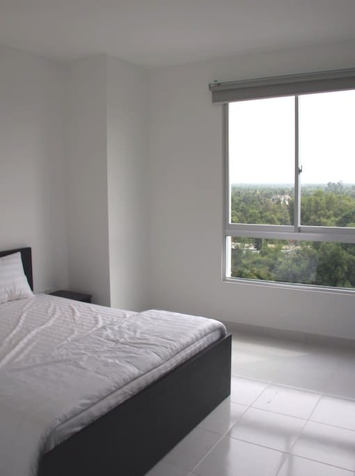 Master bedroom with view of treetops