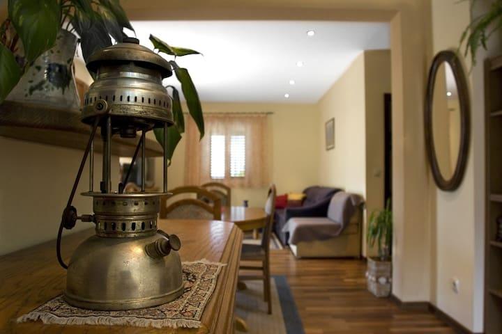Villa Elaphis Lopud - Ap. Lopud - Lopud - House