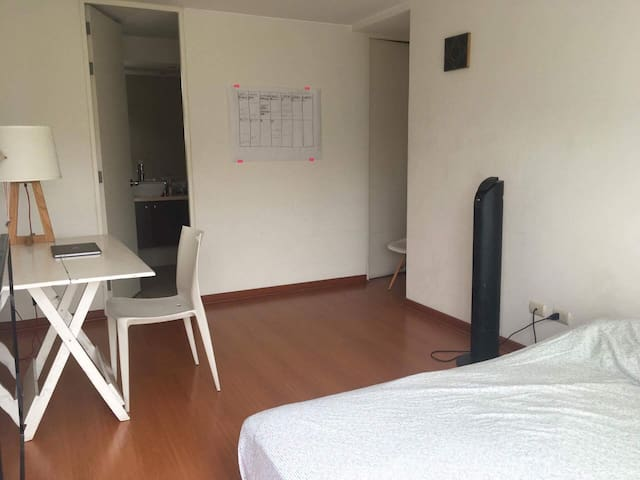 BEAUTIFUL BIG APARTMENT IN BARRANCO- LIMA - Barranco District - Apartament