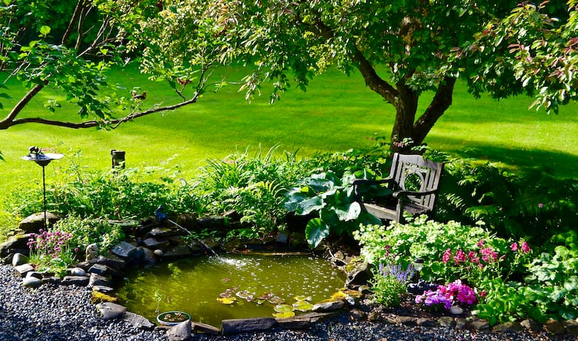 Soothing pond with gurgling fountain,