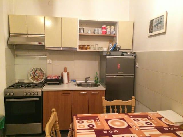 Apartmant in center
