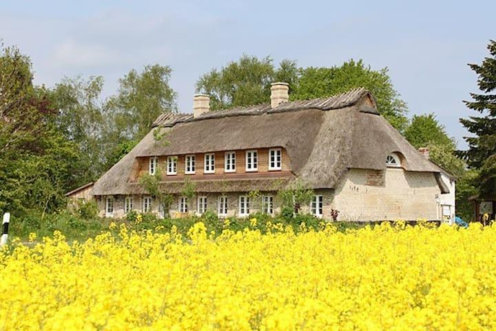 Landhaus Westerholz von 1720 - Westerholz - Pis