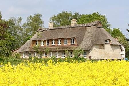 Landhaus Westerholz von 1720 - Westerholz - Huoneisto