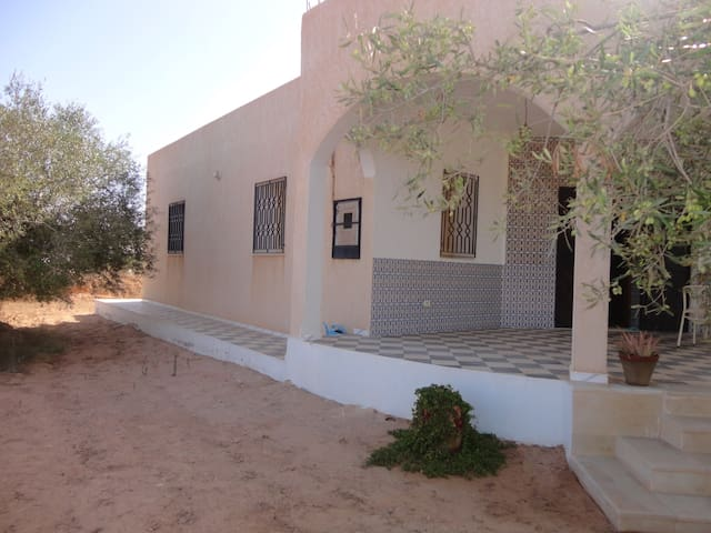 Logement sur l'ïle de Djerba