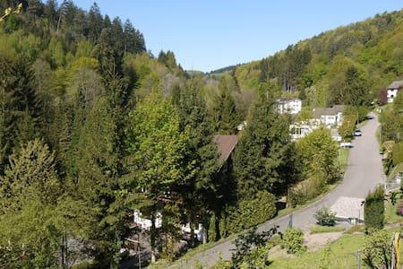 Ferienhaus im Odenwald - Villa Leon - Schönau