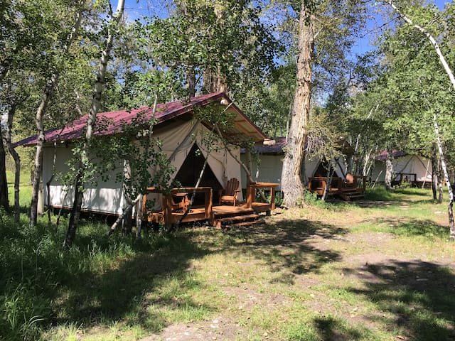 Quaking Aspen Ranch - Fly Fishing Lodge and Guest Ranch, Bison, Glamping Cabin