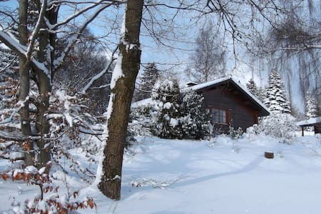 Haus Frei Wald nabij Winterberg, skigebied. - Bromskirchen