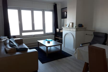 Appartment in Blankenberge seaview - near Brugge