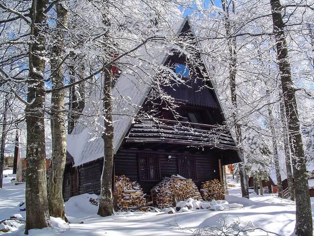 Villa Vuk Ski House