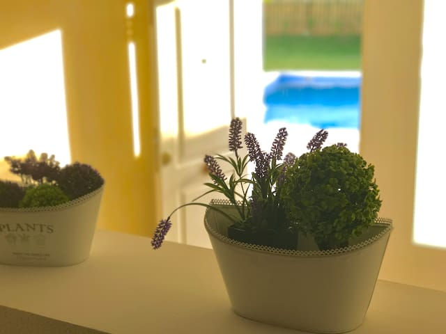Lovely apartment with swimmingpool for four guests