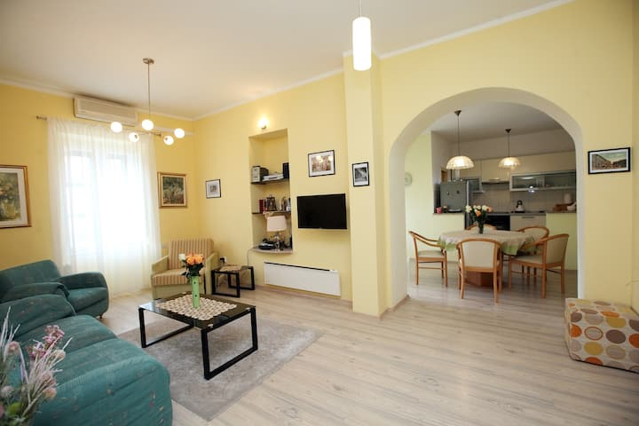 Large apartment Center in the heart of Drniš