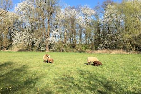 Ferienloft im Lipperland Naturschutzgebiet