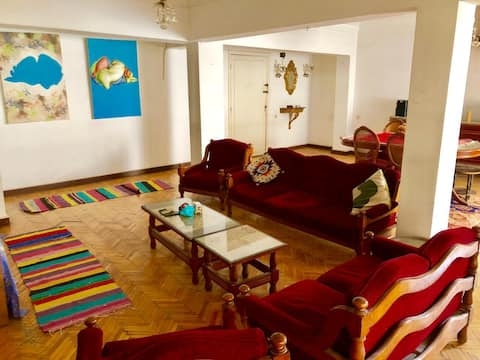 Sunny spacious quiet apartment in Dokki