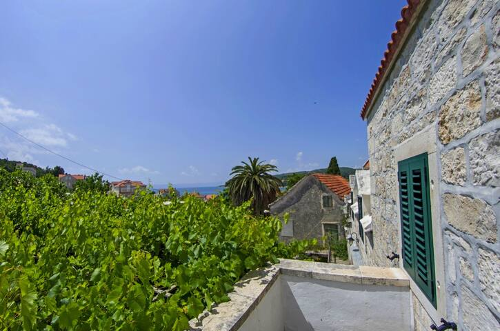 Renovated stone house - 2 apts & terrace with view - Sumartin - Haus