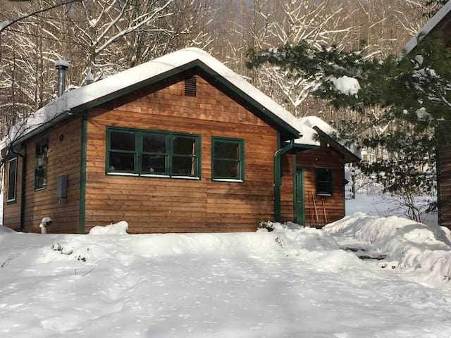 Cozy Forest Retreat near Crystal Mountain Resort!